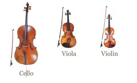 string-instruments.jpg